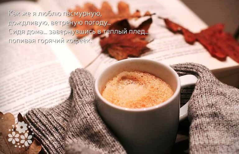 Осень чашка кофе фото   подборка 017