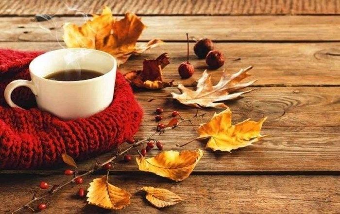 Осень чашка кофе фото   подборка 019