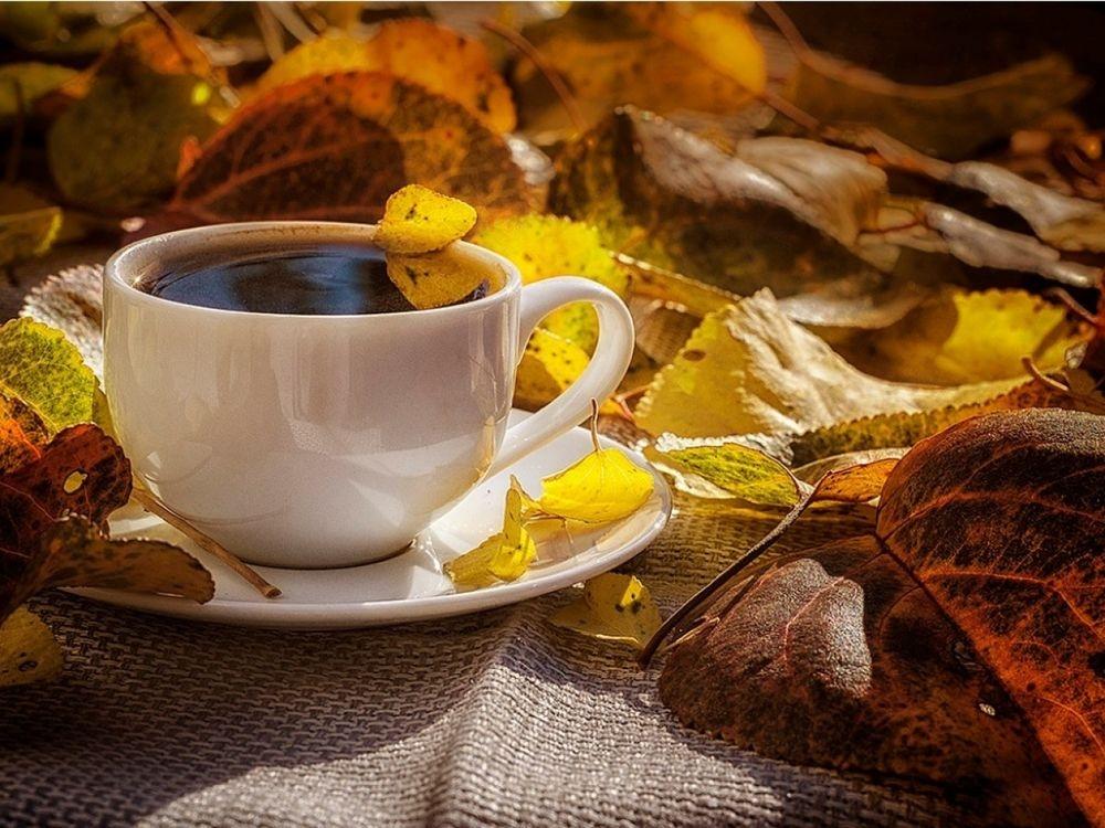 Осень чашка кофе фото   подборка 021