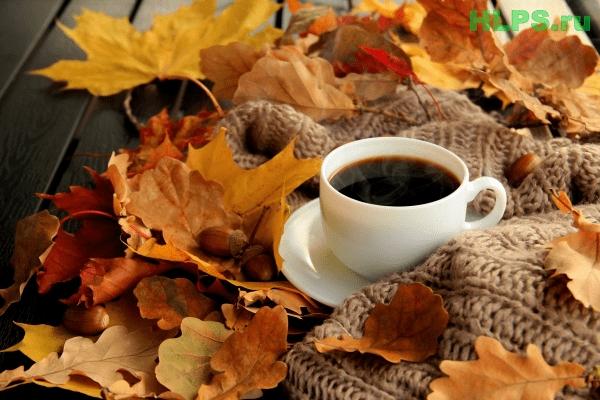 Осень чашка кофе фото   подборка 023