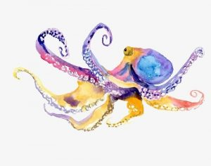 Осьминог акварель   красивые картинки029