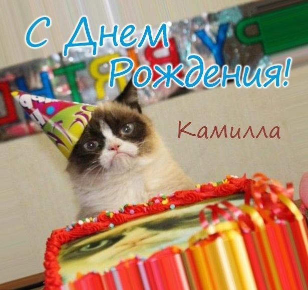 Открытка с Днем Рождения Камилла   подборка 015