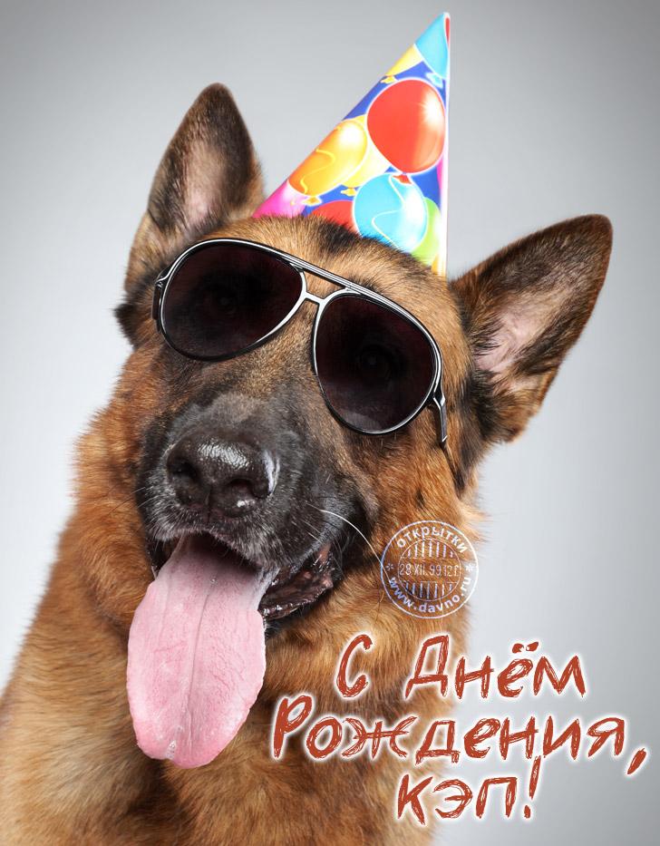 Открытка с Днем Рождения с собакой мужчине (10)