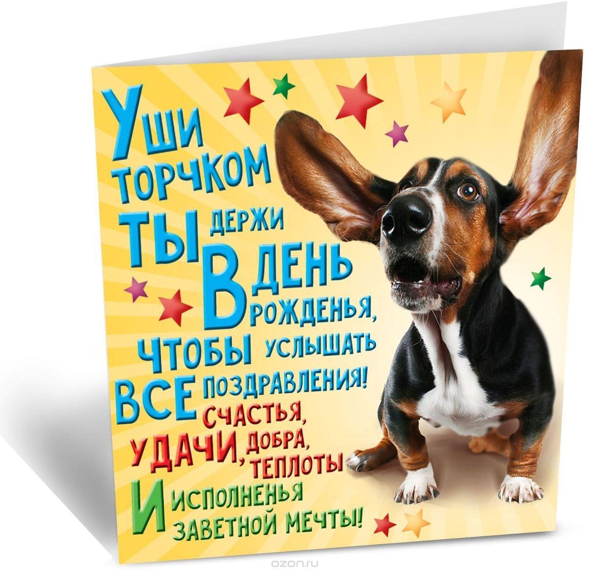 Открытка с Днем Рождения с собакой мужчине (11)