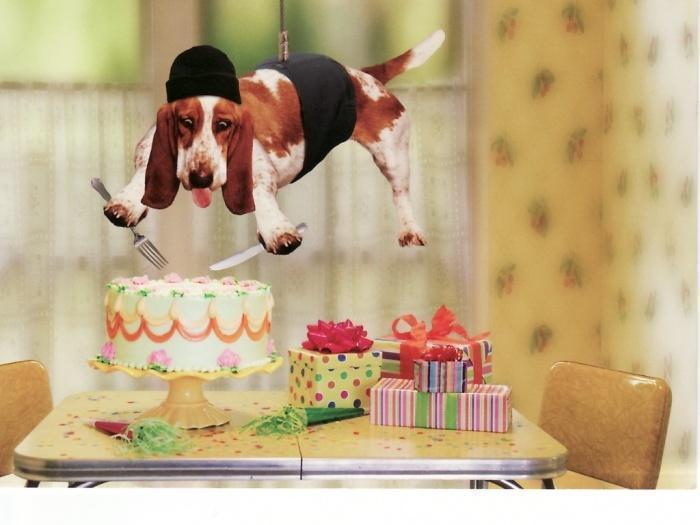 Открытка с Днем Рождения с собакой мужчине (37)
