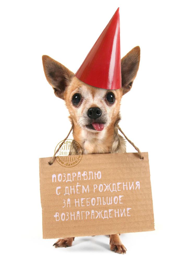 Открытка с Днем Рождения с собакой мужчине (40)