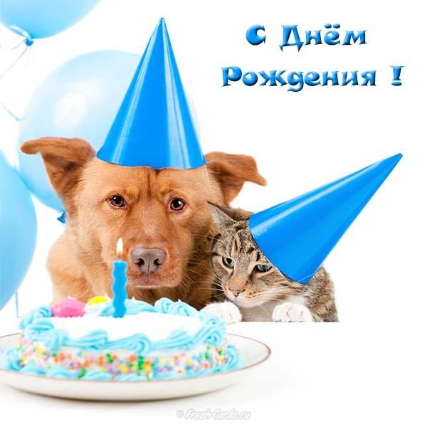 Открытка с Днем Рождения с собакой мужчине (5)
