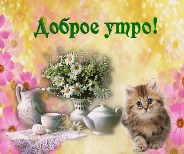Днем рождения, открытки гифки с добрым утром с животными
