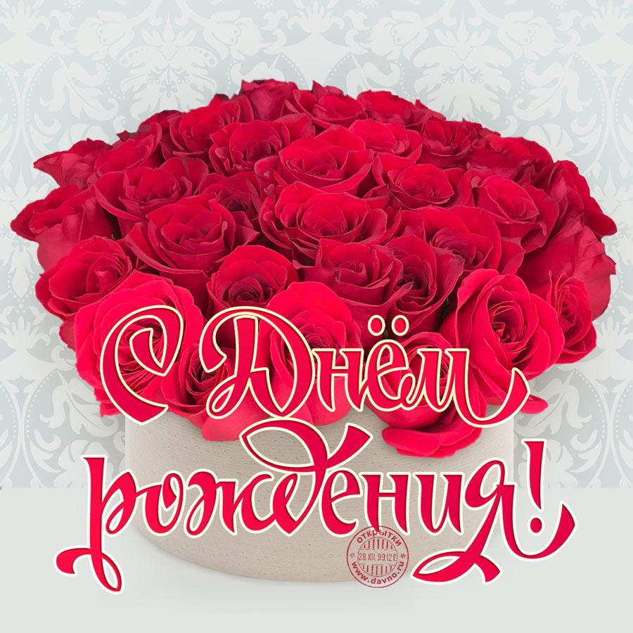 Аватарку для, открытки с розами для женщины с днем рождения