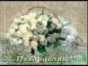 Открытки с белыми розами с Днем Рождения   подборка (15)