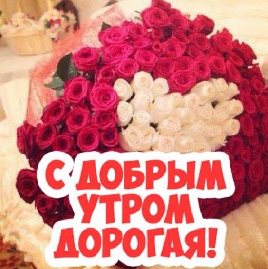 Полевых цветов, открытки с пожеланием доброго утра любимой жене