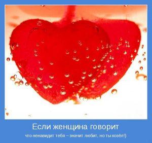 Отношения и любовь   милые картинки 023