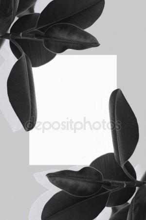 Офигенные черно белые картинки и фото 026