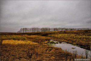 Пасмурно осень фото и картинки удивительные 026