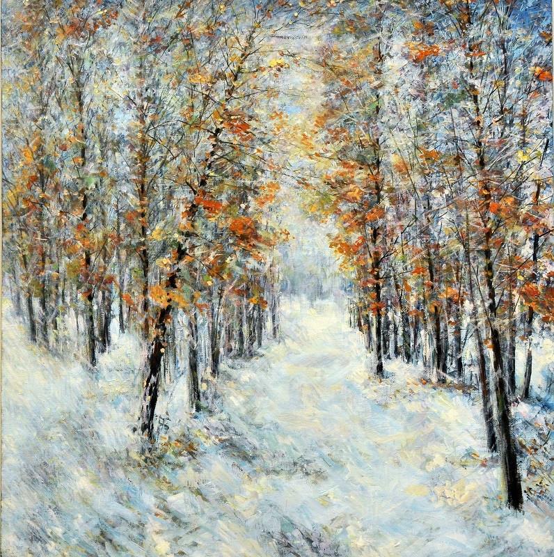 Пейзажи зимы картины и фото 001