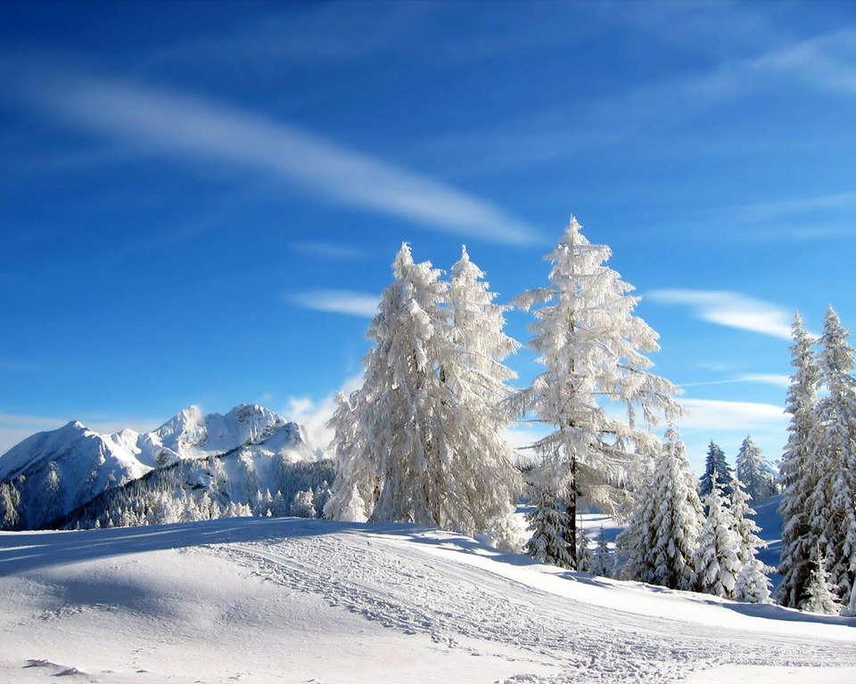 Пейзажи зимы картины и фото 015