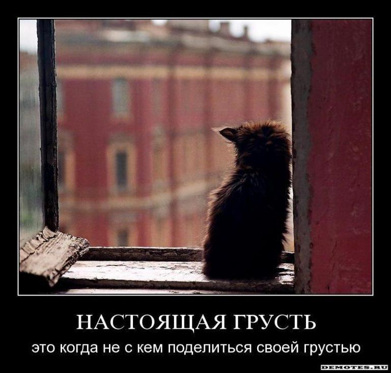 турчинов картинки когда тебе грустно и одиноко специализируется фотопечати всём