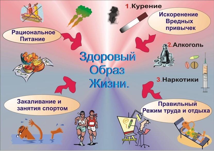 Плакаты здоровый образ жизни картинки для детей 020