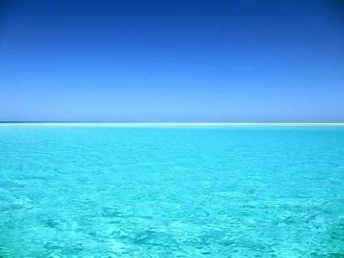 Под водой в океане фото 010