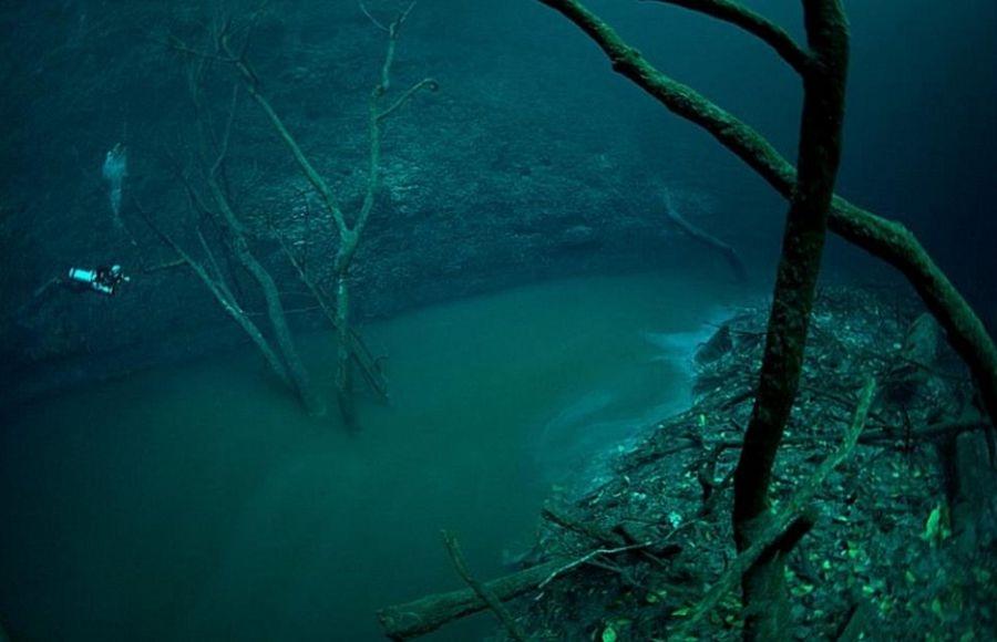 Под водой в океане фото 015