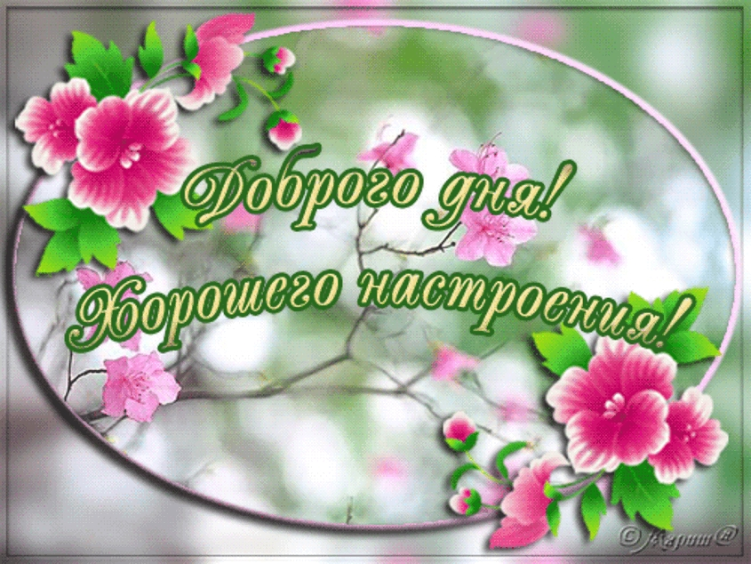 Пожелание доброго дня фото и картинки002