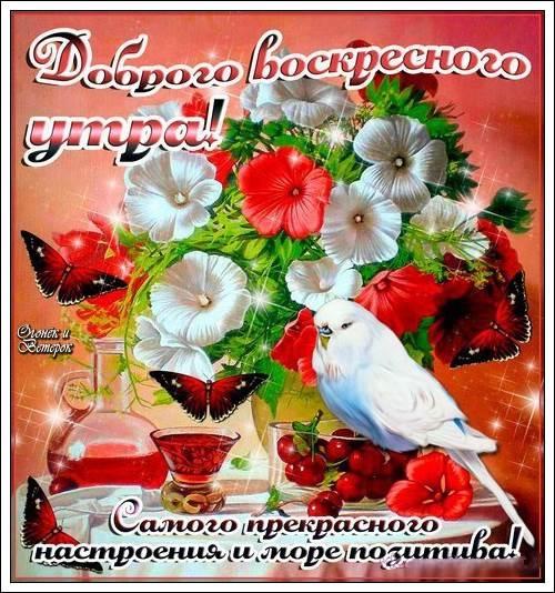 Пожелания с добрым воскресным утром в открытках010