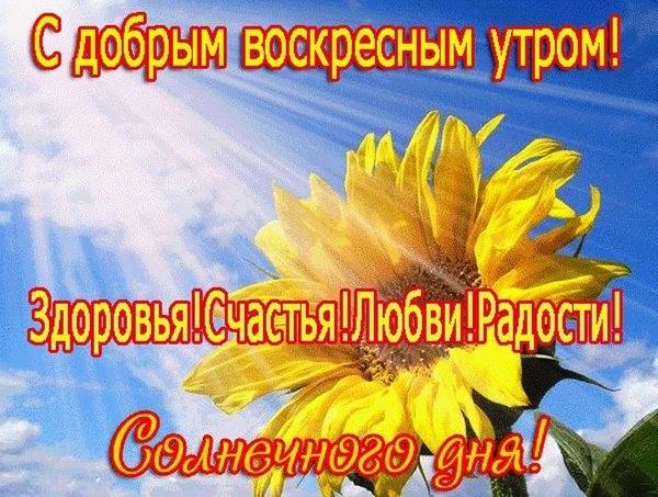 Пожелания с добрым воскресным утром в открытках012