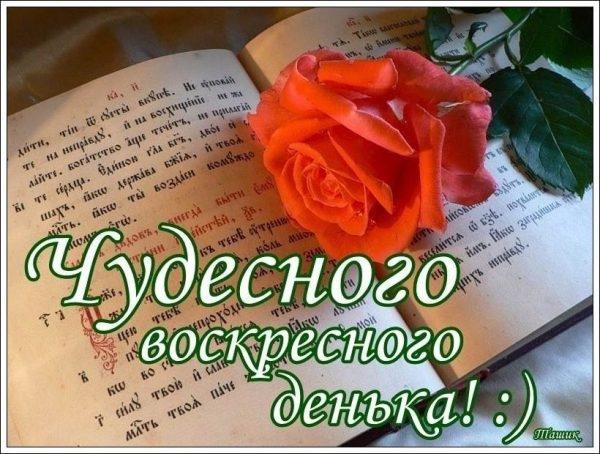 Пожелания с добрым воскресным утром в открытках027