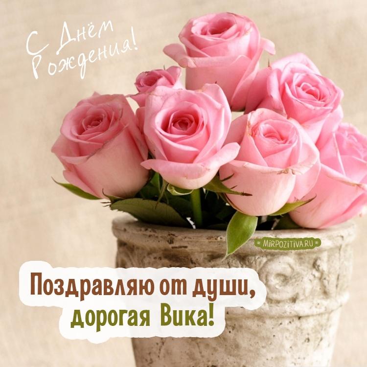 поздравления с днем рождения для вики открытки