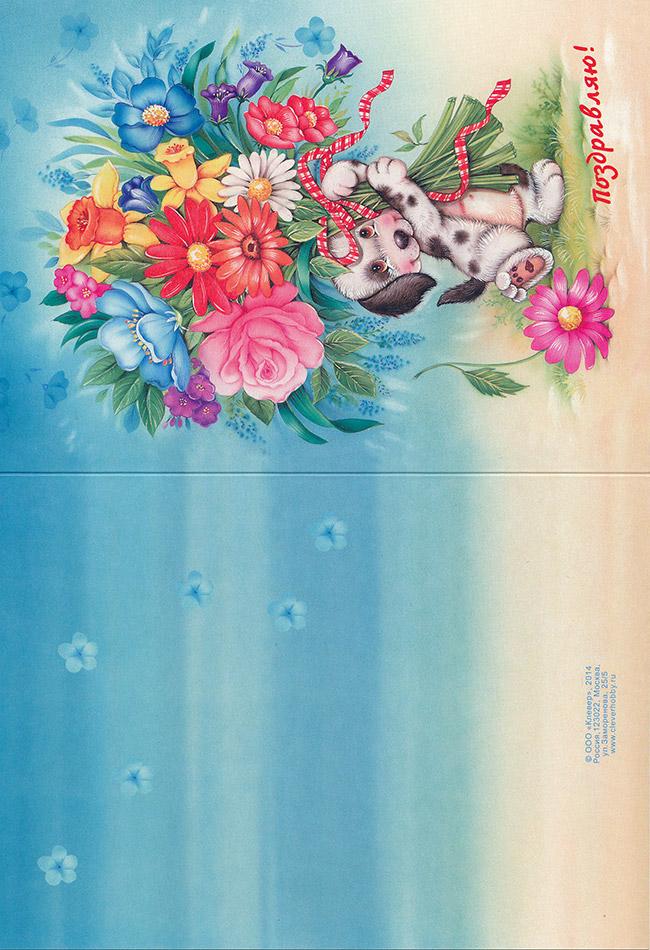 Поздравление с Днем Рождения фон для открытки (62)