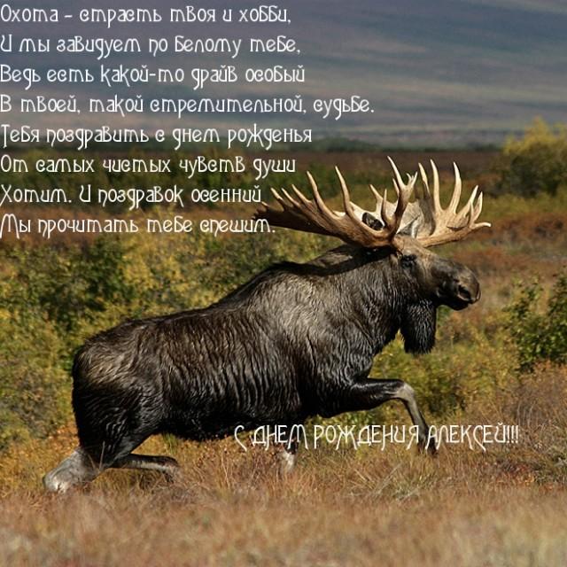Поздравления охотника с Днем Рождения в картинках (2)