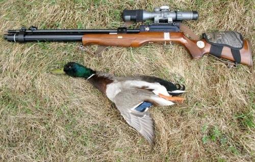 Поздравления охотника с Днем Рождения в картинках (28)
