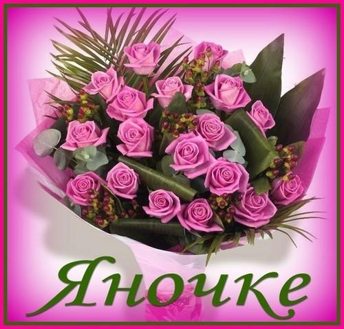 Поздравления с днем рождения прикольные для Яны   открытки011