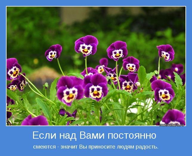 Позитивные статусы в картинках для поднятия настроения (19)
