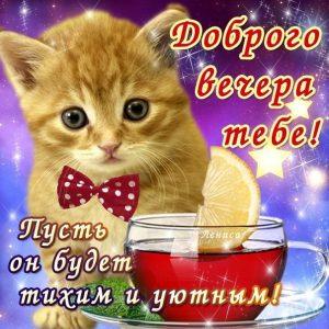 Прикольная картинка Добрый вечер 024