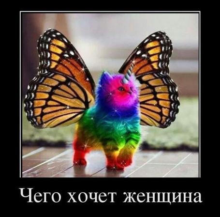 Прикольные картинки в руках бабочки 009