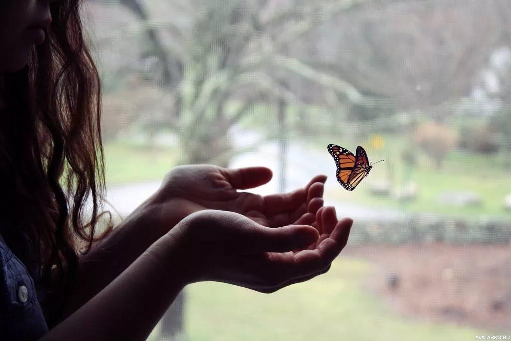 Прикольные картинки в руках бабочки 011