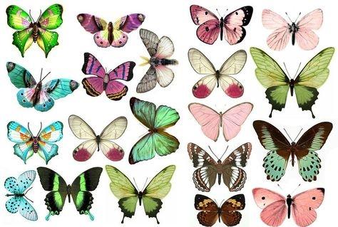 Прикольные картинки в руках бабочки 020