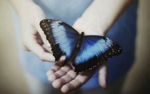 Прикольные картинки в руках бабочки 024
