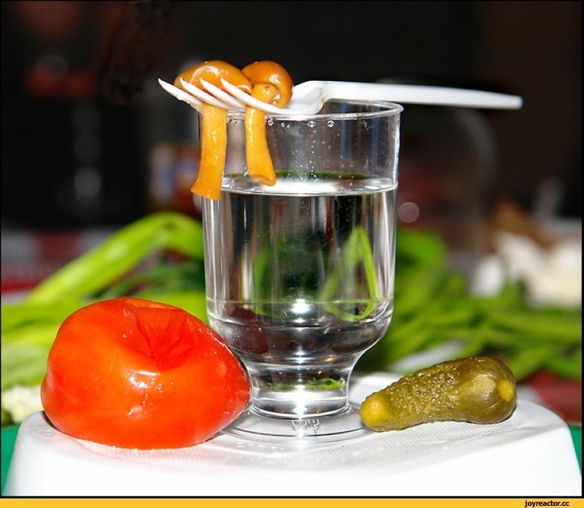 Прикольные картинки закуска и выпивка 011