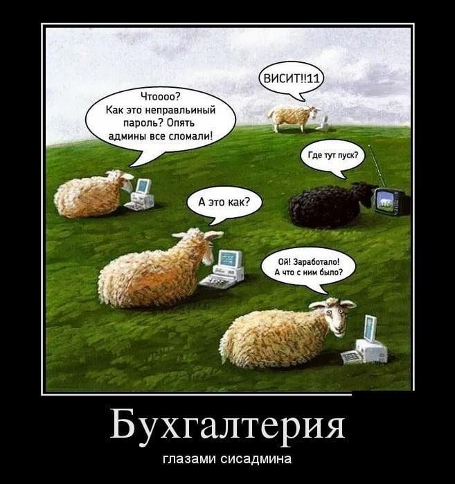Смешные картинки в бухгалтерии