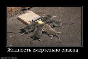 Прикольные картинки про жадных мужиков 028