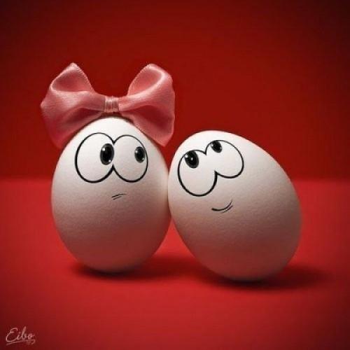 Прикольные картинки с яйцами   подборка 002