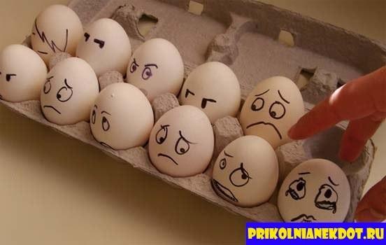 Прикольные картинки с яйцами   подборка 006