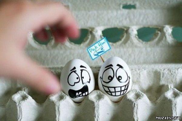 Прикольные картинки с яйцами   подборка 008