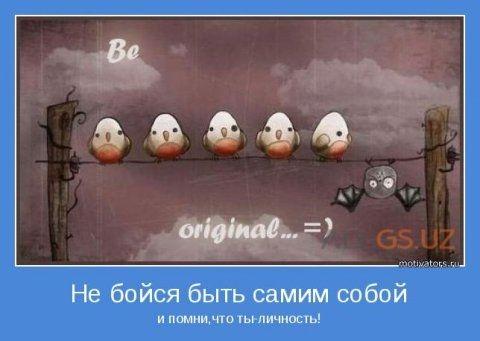 Прикольные картинки с яйцами   подборка 012