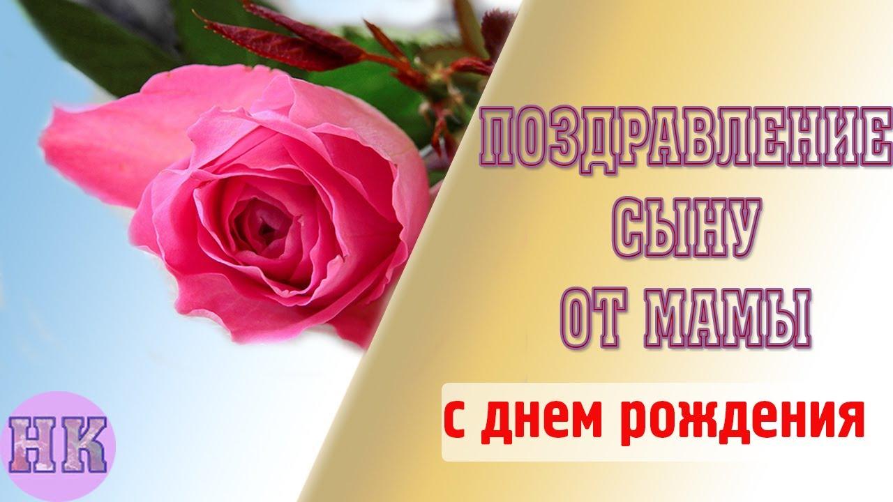 Прикольные поздравления с Днем Секретаря в картинках (1)