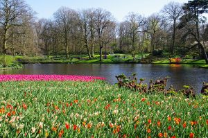 Природа весна фото на рабочий стол (22)