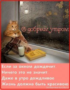 Раннее доброе утро картинки и открытки 022