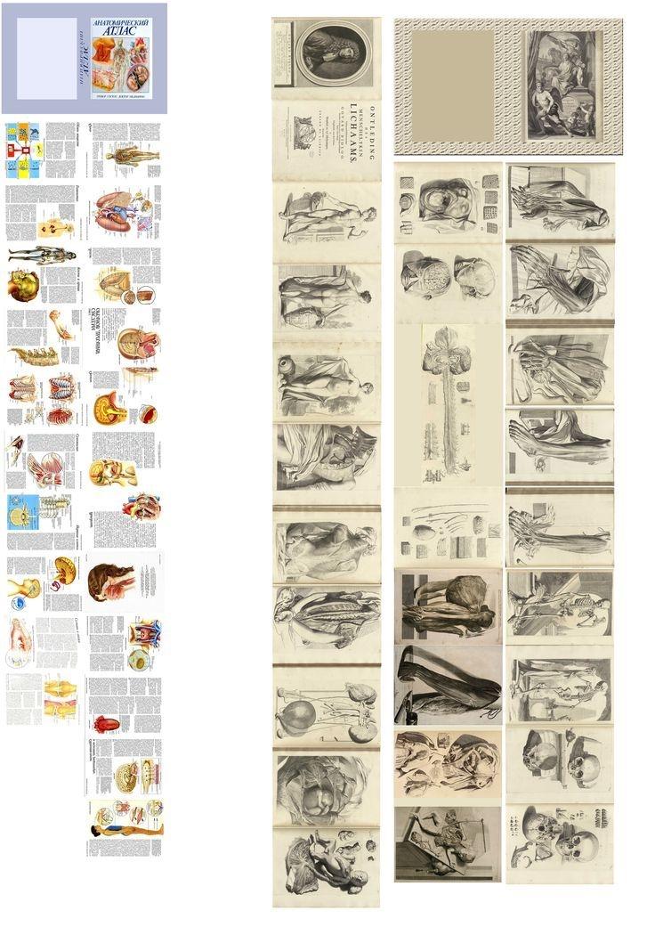 Распечатки коробки для кукол   фото и картинки022